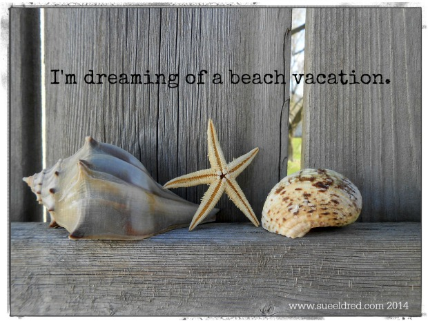 I'm dreaming of a beach vacation 2