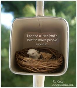Bird's Nest 3701