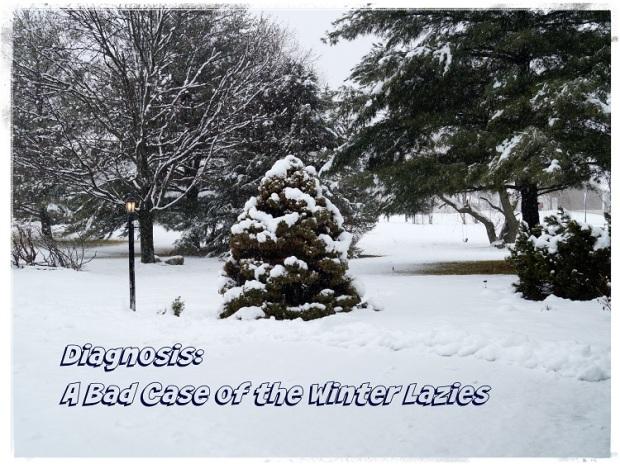 Winter Lazies