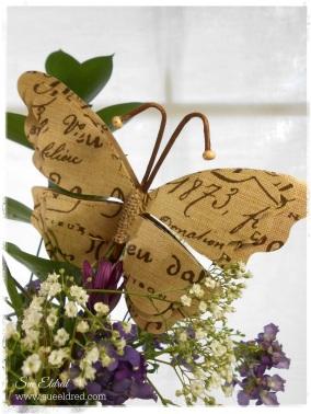 Butterfly 2255