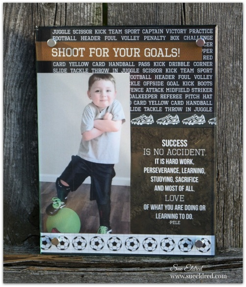 Shoot for your Goals 9260