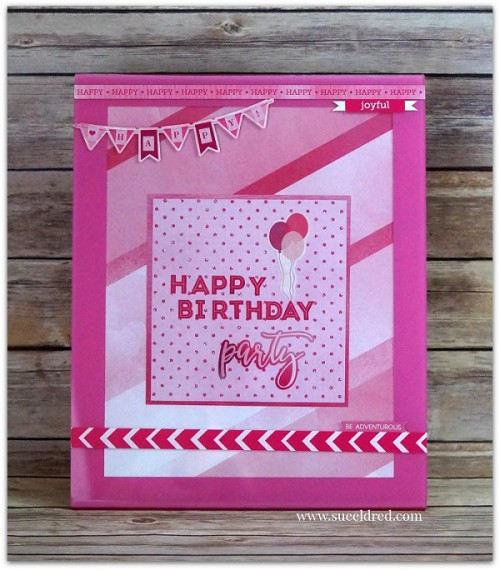 Pink Birthday Party Frame 4299