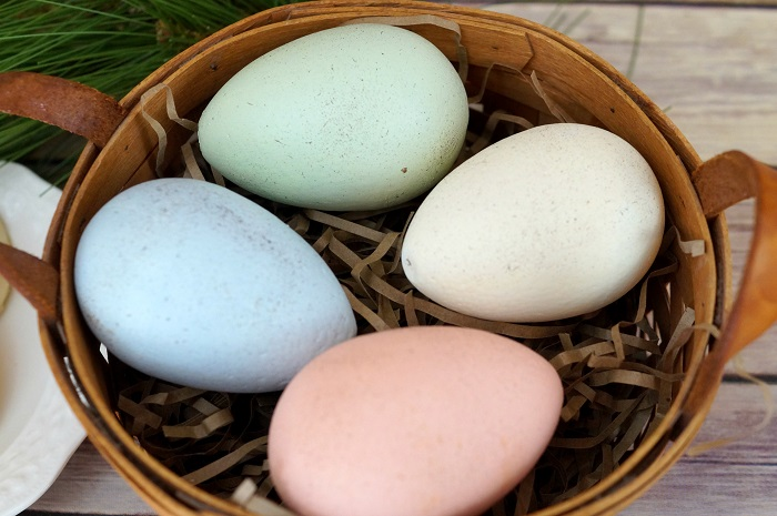 Speckled Eggs Close Up 4943