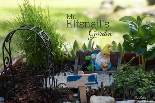 Mr. Elfsnail's Garden 8202