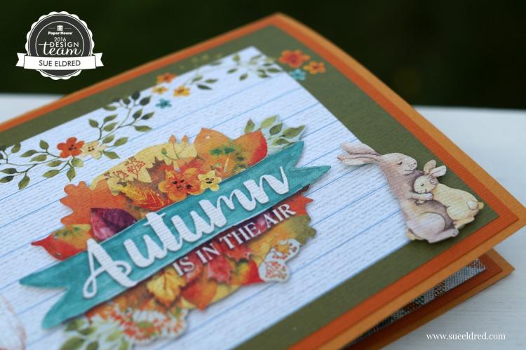 Autumn Woods Pop Up Card 0099
