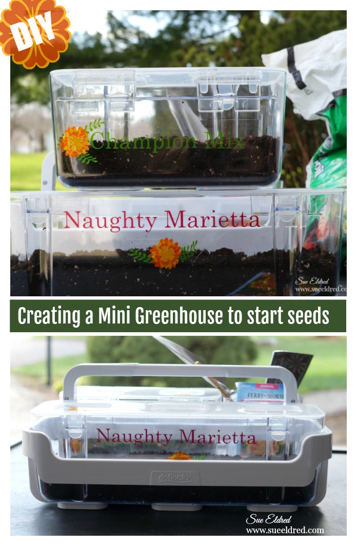 DIY-Mini Greenhouse for Starting Seeds-Sue's Creative Workshop www.sueeldred.com