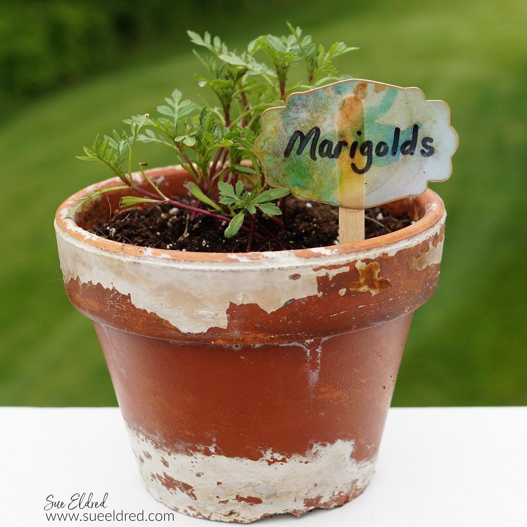 DIY Flower Pot Label